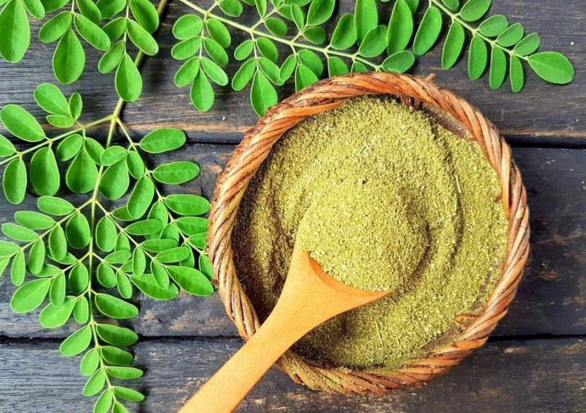 Learn About an Indian Super Food – Moringa