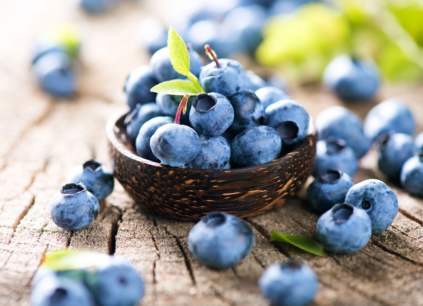 5 Reasons Why Blueberries Are so Healthy